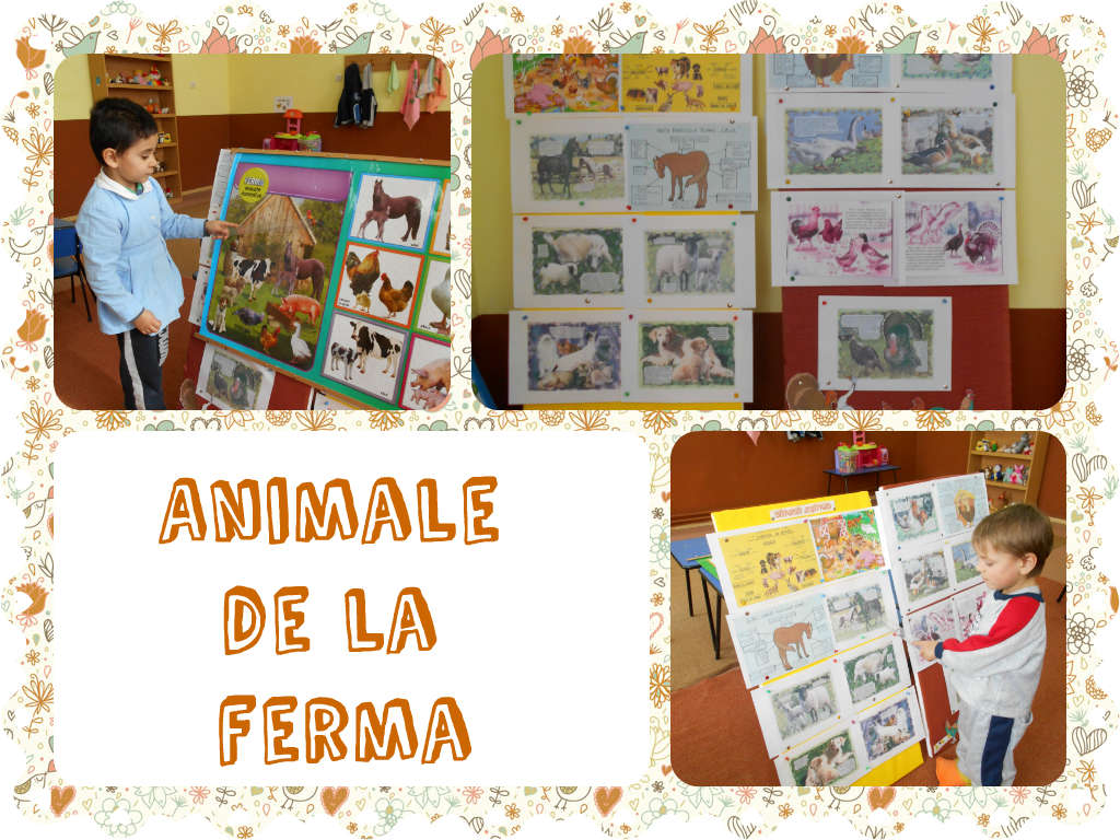 animale domestice gradinita